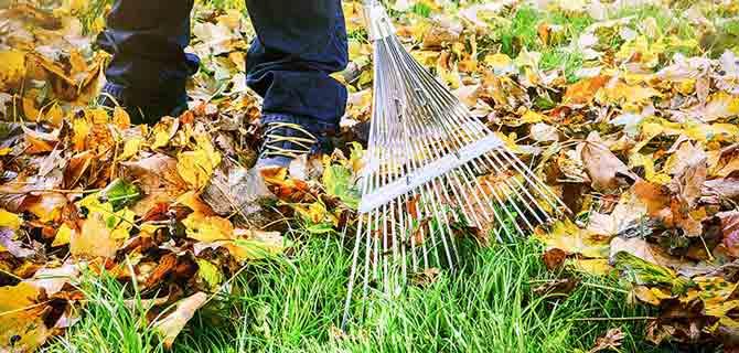 I Giardini di Simone - servizi invernali pulizia pre inverno
