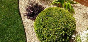 progettazione giardini _ i giardini di simone